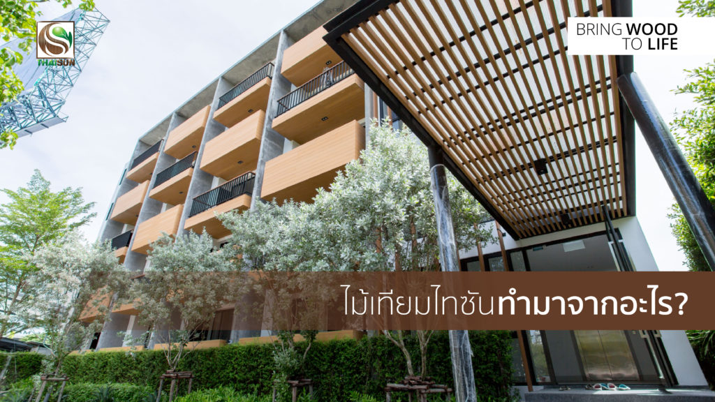 Thaisun_SC001-01