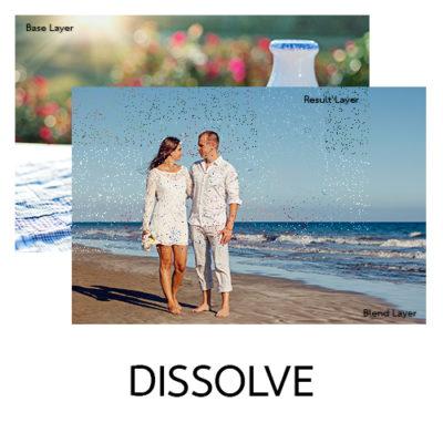 รับออกแบบ-Mr.Mee Studio-191-Dissolve